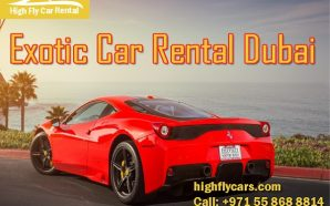 Rent Exotic Car to Experience Feeling of Excitement, Comfort and…
